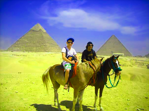 Egypt Horses